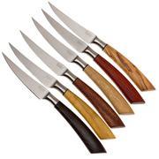 Saladini ensemble 6 pièces couteaux à steak 23 cm, ensemble cadeau